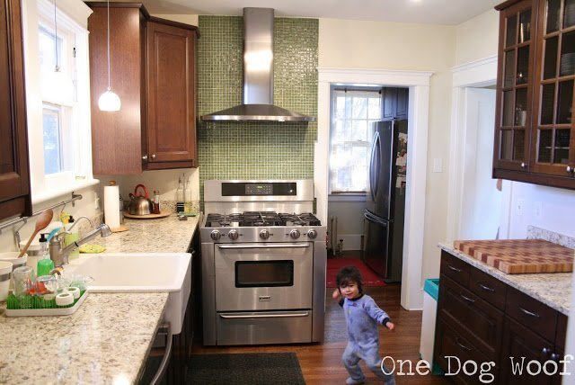 One Dog Woof: Ikea cabinets, Kitchen Renovation