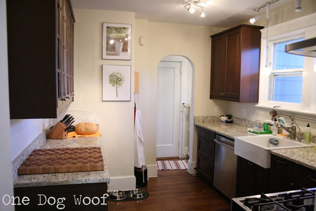 One Dog Woof: Ikea Cabinets, granite countertops
