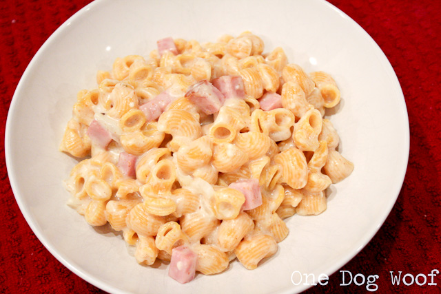 One Dog Woof: Mac and Cheese with Ham