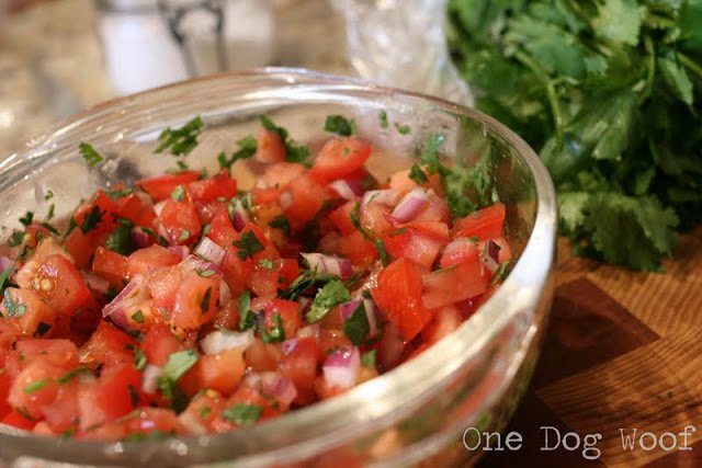 One Dog Woof: How to Dice Onions for Salsa