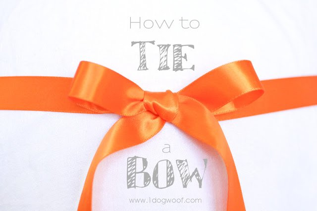One Dog Woof: How to Tie a Ribbon Bow