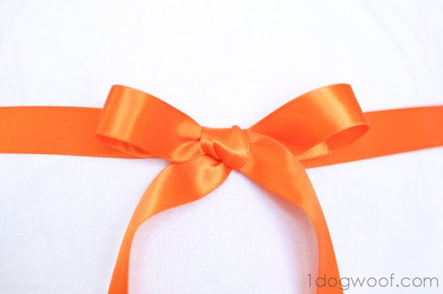 One Dog Woof: Tie a Beautiful Ribbon Bow