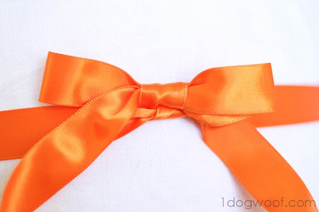 One Dog Woof: Tie Beautiful Ribbon Bows