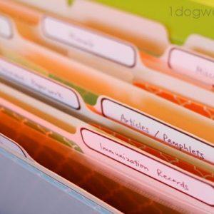 Baby Shower Folder