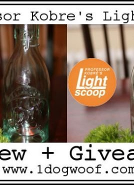 Improving Indoor Photography with Lightscoop, Review + Giveaway