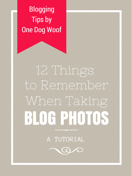 12 Things to Remember when Taking Blog Photos | www.1dogwoof.com