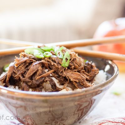 Asian Crockpot Pulled Pork with Apples