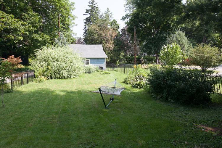 backyard-1small