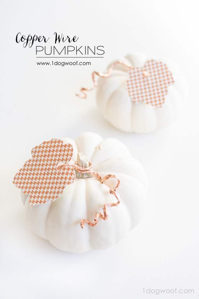 Adorable copper and paper embellished pumpkins from www.1dogwoof.com