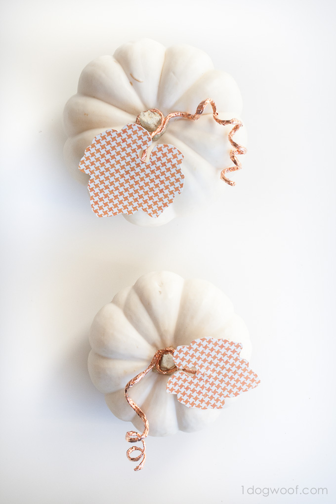 Cut a leaf with a Silhouette Cameo and add some copper wire to decorate a white pumpkin | www.1dogwoof.com