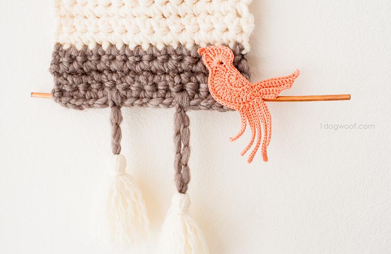 A little cuckoo bird, hanging out on a limb.