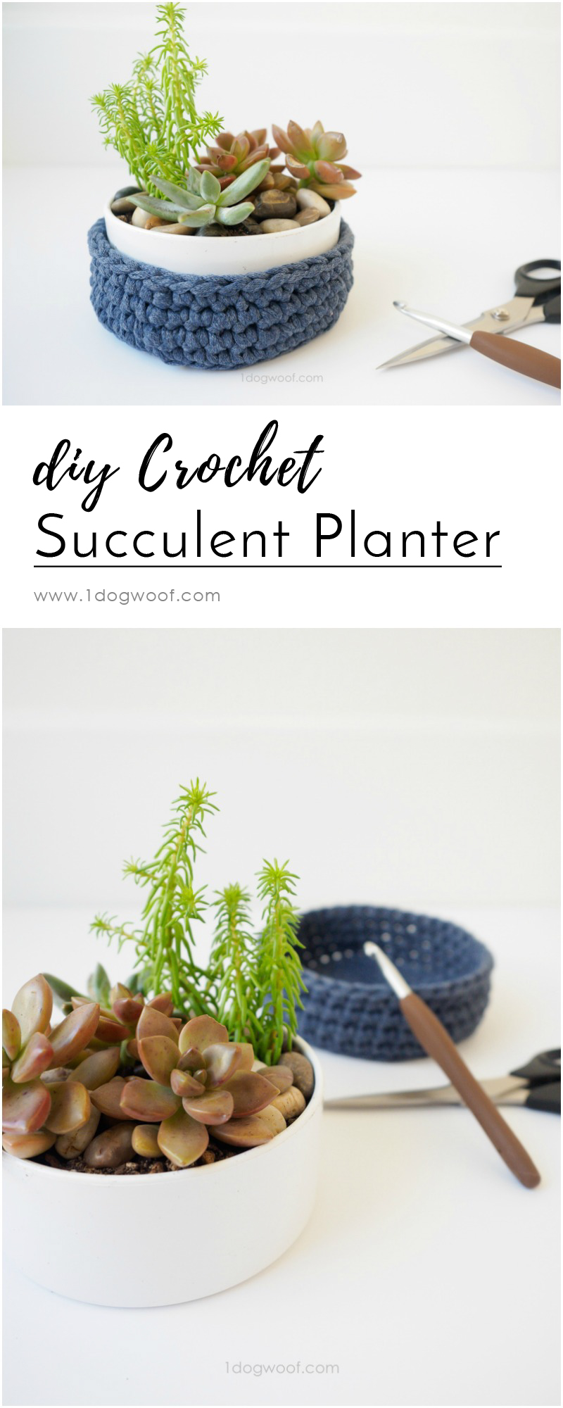 Make a quick and easy DIY succulent holder with a clean modern crochet holder.
