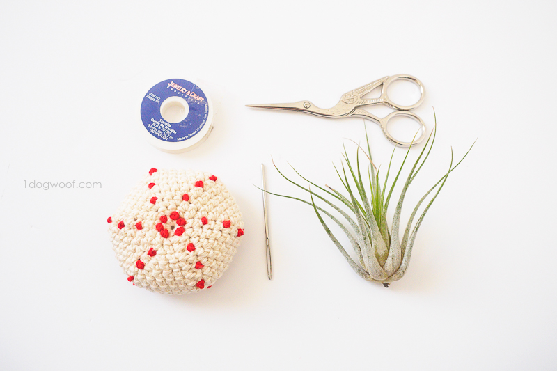 air plant jellyfish assembly