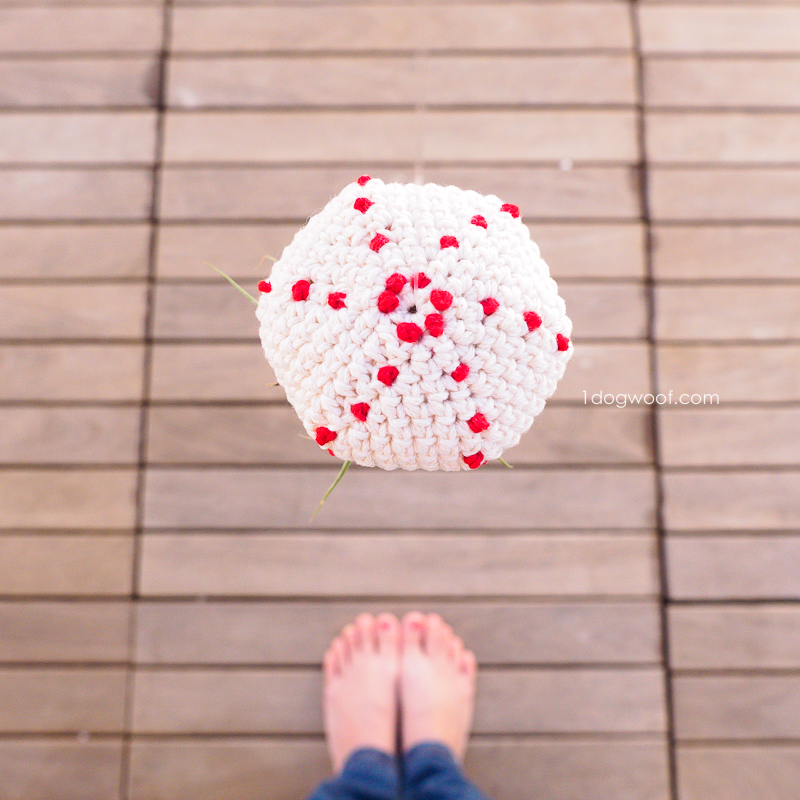 crochet air plant jellyfish | www.1dogwoof.com