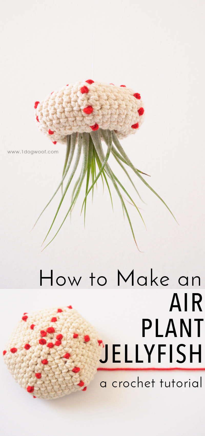 How to Make a Crochet Air Plant Jellyfish. Makes for an adorable bit of decor! Free pattern + tutorial at www.1dogwoof.com