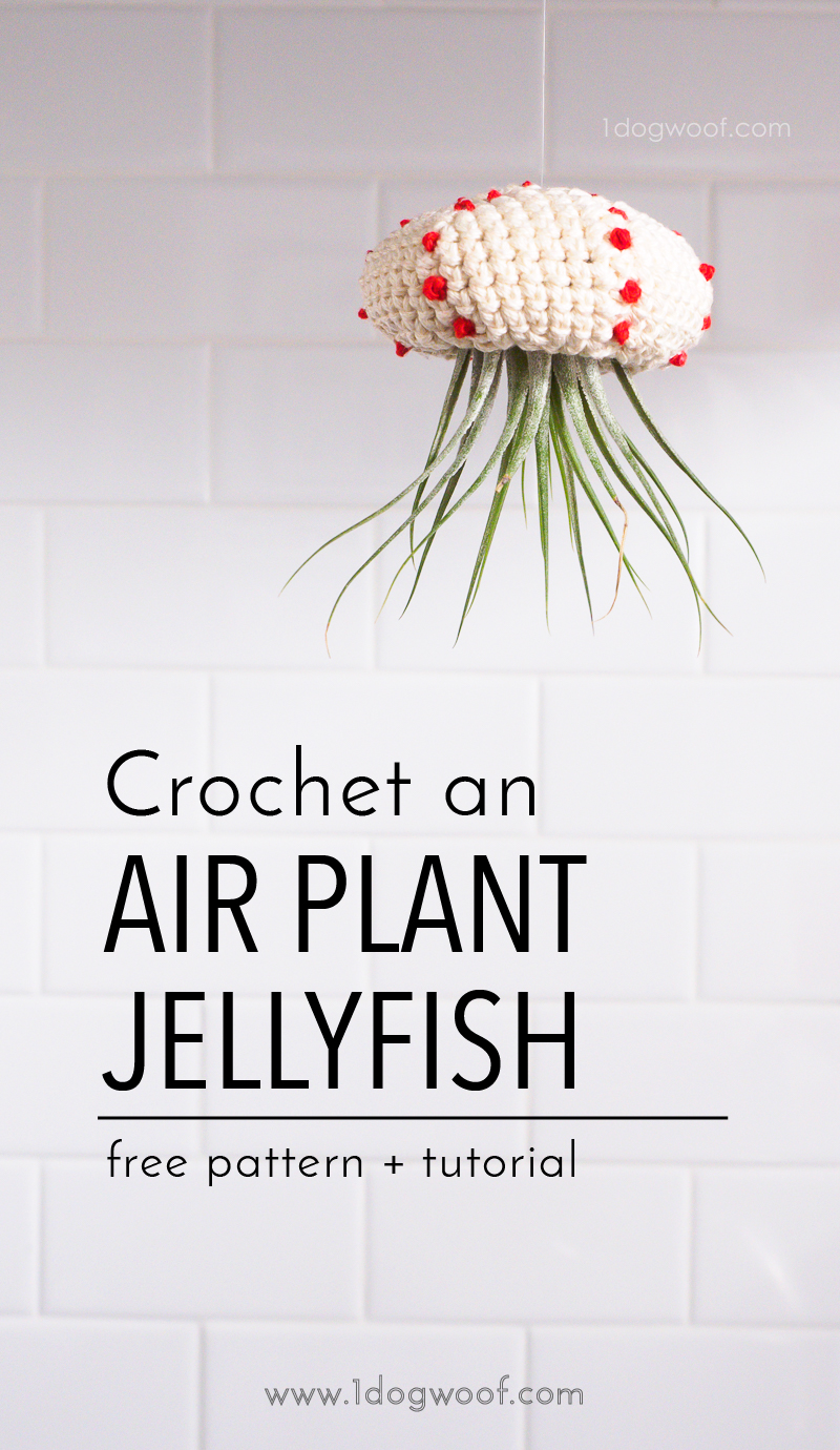Make a crochet air plant jellyfish with a little bit of scrap yarn! Free pattern + tutorial at www.1dogwoof.com
