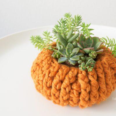 Crochet Succulent Pumpkin Planter