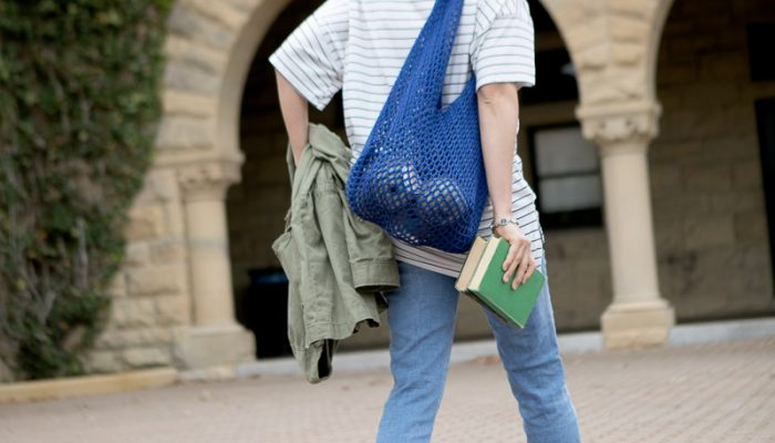 Weekend Wanderer Mesh Bento Bag Free Crochet Pattern