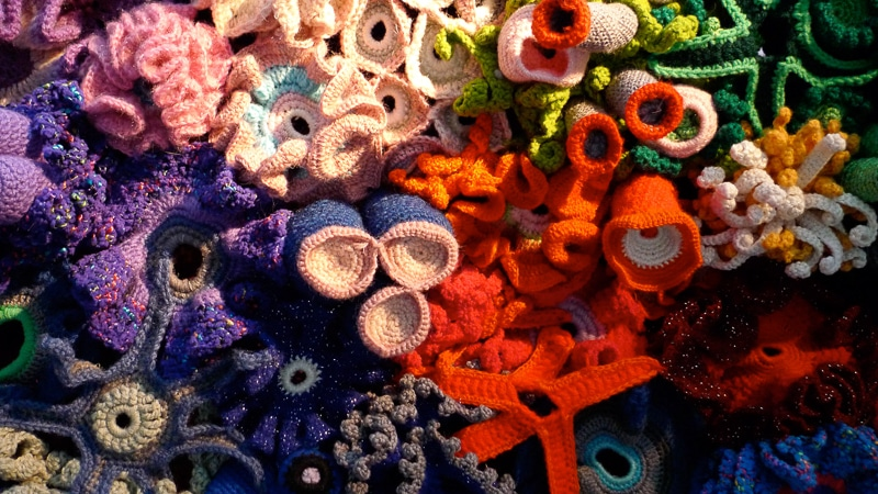 crochet coral reef from the Institute for Figuring